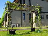 【送料無料】果樹棚セット 積水樹脂 フルーツパーゴラ DXタイプ