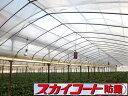 【送料無料】農PO タキロンシーアイ スカイコート防霧 幅230cm×厚み0.05mm 原反100m