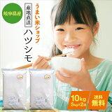 岐阜県産ハツシモお米10kg