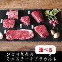 (肉の日限定)(1,296円均一)部位で選べる加古川熟成肉ミニステーキアラカルト 各1枚(冷凍便)