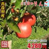 【ただいま、有袋ふじとなります】青森りんご☆送料無料☆バラ詰めりんご11kg(11キロ前後)28〜50玉【ジュース・スムージーにおススメ】