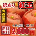 青森りんご☆送料無料☆訳あり紅玉4.5キロ18〜28玉