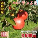 青森りんご☆送料無料☆訳ありりんごサンふじ10kg(10キロ)28〜40玉【わけありりんご】