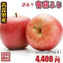 青森りんご☆送料無料☆訳ありりんご有袋ふじ10kg(10キロ)28-40玉【わけありりんご