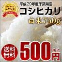 【送料無料】平成29年度千葉県産新米コシヒカリ白米750g◆...