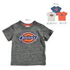 DickiesTシャツ
