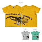 HERCULESBEETLETシャツ