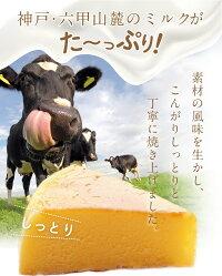 六甲山麓牛乳仕込み遊酪舎しっとりしたちーずけーきチーズケーキ5号約300g