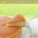六甲山麓牛乳仕込み 遊酪舎しっとりしたちーずけーき チーズケ...