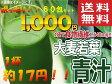 送料無料 大麦若葉 青汁 分包 タイプ 3g×30袋 入り 2箱 1000円 ポッキリ 10P03Dec16