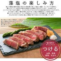 蒲刈物産海人の藻塩スタンドパック100g【2個セット】
