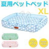 ペット ベッド 夏用 マット メッシュ パイル ポルカドット柄 XLサイズ