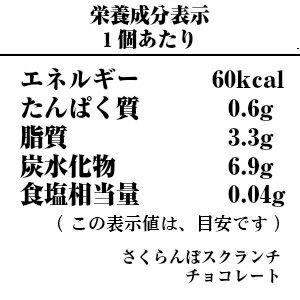 さくらんぼクランチチョコレート-栄養成分表示