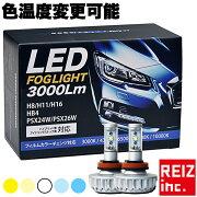 LED,�ե�������,H8/H9/H11/H16/HB4/HB3/H10,�����?�ե���,3000�롼���,���顼��Ǯ�ե����,�������ѹ���ǽ,����̵��