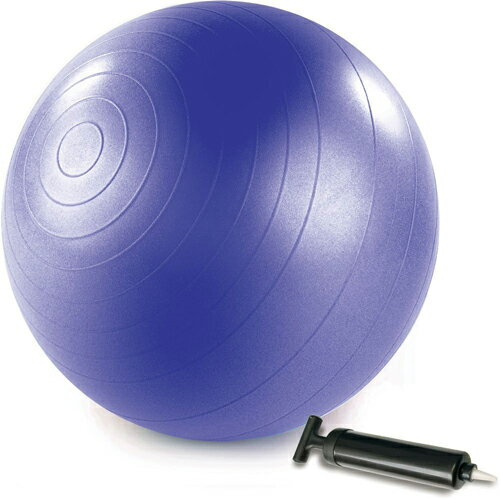 STOTT PILATES(ストットピラティス)Stability Ball (Purple) with Pump <スタビリティボール(パープル)ポンプ付き 75cm>