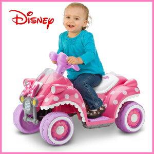 【Disneyzone】【在庫有り】【10,800円以上で送料無料】Disney ディズニー ミニーマウス ホット...