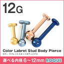 ボディピアス 12G カラー ラブレットスタッド 定番 シンプル(1個売り)◆選べる福袋対象◆◆オマケ革命◆