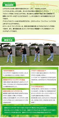 広田ゴルフロジャーキングスイングドクター