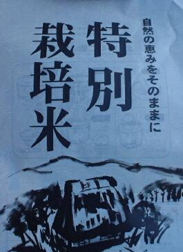特別栽培/30年産宮城県ササニシキ精白米5kg/環境保全米/登米市産
