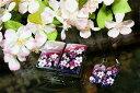 「桜玉セット」と「同じ絵柄ストラップセット」どちらも無料セットで、かなりお買い得♪しかも....