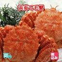 北海道産(太平洋) 浜茹 毛蟹 2ハイ(約1kg)上級堅蟹(...