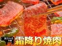 四万十産黒毛和牛の最上焼き肉!【40%引き】幻の四万十牛霜降焼肉(500g)