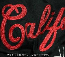 Tシャツメンズルーニーテューンズ/トゥイティー刺繍/プリント星条旗/サーフボード半袖キャラクターLooneyTunes