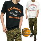 Tシャツメンズルーニーテューンズ/ロードランナー刺繍/プリント星条旗/サーフボード半袖キャラクターLooneyTunes