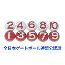 ゲートボール ニチヨー NICHIYO JGU 公認ボール 10個セット NY-10 ゲートボール用品