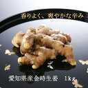 ☆辛みが強い金時生姜☆TV「食彩の王国」でもご紹介。愛知県から産地直送。『金時根生姜(1kg)』香りがいいです!すりおろしたり、スライスしてどうぞ。生姜シロップ、酢しょうがにも。【クール便】