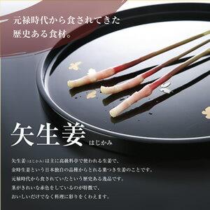 ★金時生姜栽培60年の歴史★木村農園が伝統の製法を守り、作り続ける矢生姜は主に高級料亭で使...