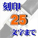 �ӻ���ʸ���������ӥ�����ʸ��ޤǤ�̾������å�����Ħ��ޤ�KS-25