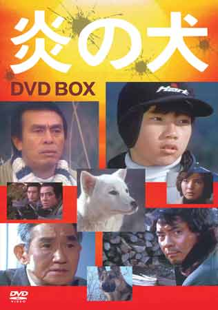炎の犬 DVD BOX 【DVD】【RCP】