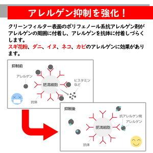 ピットワークエアコンフィルター日産セレナGFC27用AY685-NS009花粉・におい・アレルゲン対応タイプPITWORK エアコンエレメントクリーンフィルタクリーンエアフィルタキャビンフィルタ除塵集塵花粉活性炭脱臭抗菌抗アレルゲンPM2.5