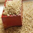 発芽玄米全粒10キロ 栄養の表皮丸ごと 無精白の全粒はここだ...