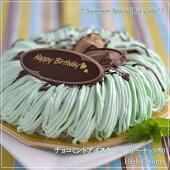 夏限定・チョコミントアイスケーキ(ドーナッツ型)