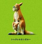 ミニステッカー付!物販【パンダの穴】 シャクレルプラネット2 ●シャクレルカンガルー【単品】 Shakurel Planet