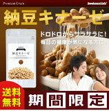 PremiumGrain納豆キナーゼ【約3か月分】ナットウキナーゼ、レシチン、ビタミンE配合サプリメント!エイジングケア