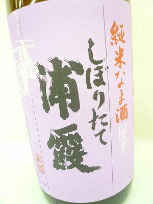 【季節限定品】浦霞しぼりたて純米生酒1800ml【クール便】