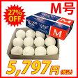 【あす楽対応】 ナガセケンコー KENKO 試合球 軟式 ボール M号 M-NEW※ダース販売(12個入) 野球用品 スワロースポーツ