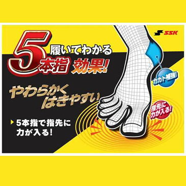 SSK エスエスケイ 野球 ソックス 5本指 2足組 27-29cm YA1629 ウエア ウェア ssk 靴下 野球部 クリスマスのプレゼント用にも 野球用品 スワロースポーツ