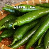 青唐辛子 200g 生唐辛子 韓国産 唐辛子 辛口 ※季節により辛さにバラツキがあります。