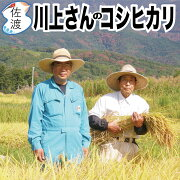 川上さんのコシヒカリ