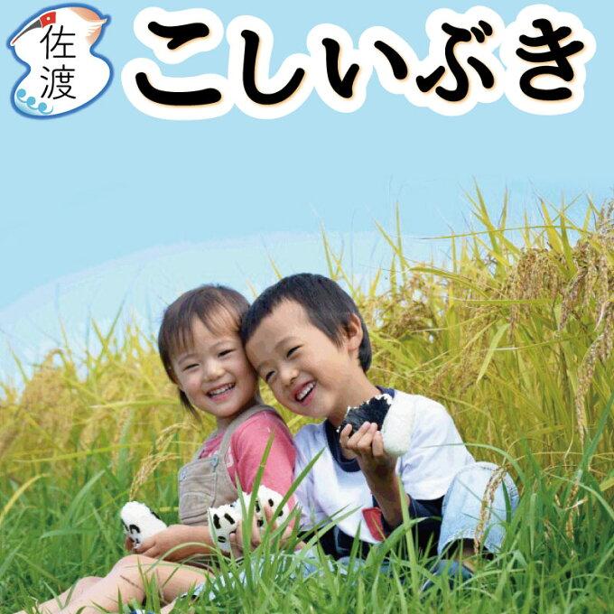 令和2年産 佐渡産こしいぶき 15kg(白米/玄米/無洗米/7分づき)慣行栽培 新潟...