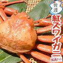 佐渡産紅ズワイガニ 紅Aセット合計2kg以上 400〜500g×5匹入り鮮度がいいから美味しい!!  ...