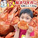【訳あり】佐渡産紅ズワイガニ 丸特セット大3-5匹入or 小6-8匹 鮮度がいい