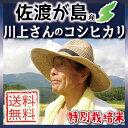【送料無料】【新米】平成30年度 新潟県佐渡産コシヒカリ25...