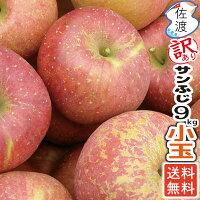 佐渡産りんごサンふじ小玉9kg