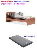 フランスベッド・手すり2本付き電動ベッド