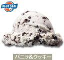 メガ盛り 業務用 バニラ&クッキーアイス ブルーシールアイス...
